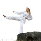 Taekwondo martial arts Royalty Free Stock Images