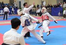Taekwondo referee Stock Image