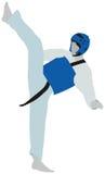 Taekwondo-Sport Lizenzfreie Stockfotografie