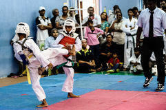 Taekwondo Tournament Royalty Free Stock Photography