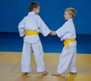 Taekwondo: two boys training. Taekwondo: boys training, blue background Stock Photo