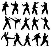 Taekwondo-vechter stock illustratie