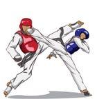 Taekwondo vektor för silueta för konstflickor krigs- Royaltyfri Foto