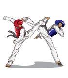 Taekwondo vektor för silueta för konstflickor krigs- Royaltyfri Bild