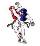 Taekwondo vektor för silueta för konstflickor krigs- Arkivfoton