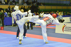 Taekwondo wtf toernooien Stock Foto