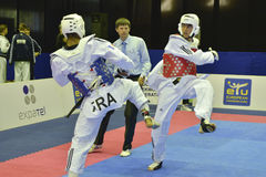 Taekwondo wtf tournament Royalty Free Stock Photo