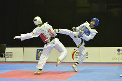 Taekwondo wtfturnering Royaltyfri Fotografi