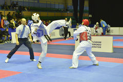 Taekwondo wtfturnering Royaltyfria Foton