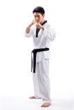 Taekwondoactie stock afbeeldingen