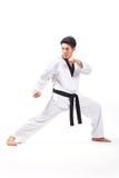 Taekwondoactie stock fotografie