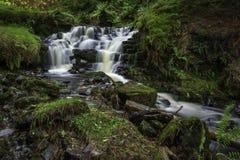 Taf Fechan vattenfall arkivbild