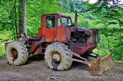 TAF in the forest Royalty Free Stock Images