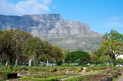Tafelberg von Robbin Island Lizenzfreie Stockfotos