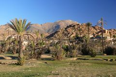Tafraoute, Morocco. Oasis town in the southern Morocco Stock Photo
