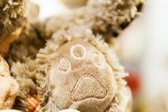 Tafsa skottet för närbilden för ramen för leksaker för nallebjörnen som sitter ensam främre mintkaramellgräsplanbakgrund Royaltyfria Foton