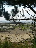 Tag auf der Insel Stockfoto