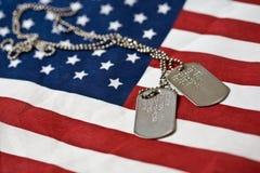 Tag de cão na bandeira americana Fotos de Stock Royalty Free