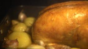 Tag der Danksagungs-4K die tipical köstliche Türkei vorbereitend, die im Ofen kocht stock video