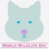 Tag der Wolf Weltwild lebenden tiere Stockfotos