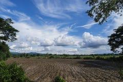 Tag des guten Wetters, Feld und blauer Himmel Lizenzfreies Stockbild