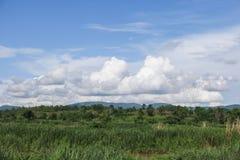 Tag des guten Wetters, Feld und blauer Himmel Lizenzfreies Stockfoto