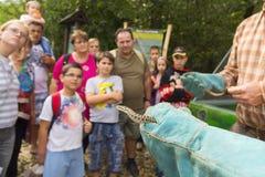 Tag des ungarischen Wiesenotters in Szeged Stockbild