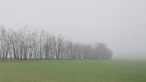 Tag des Winters auf Französisch Vexin Lizenzfreie Stockfotos