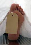 Tag do dedo do pé Foto de Stock Royalty Free