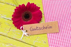 Gerbera daisy flower with gift tag german word, Gutschein, means voucher or coupon for anniversary or birthday. Tag with german word, Gutschein, means voucher or Stock Images
