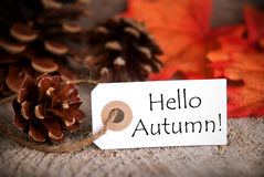 Tag with Hello Autumn Stock Photography