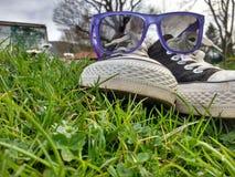 Tag im Gras lizenzfreies stockfoto