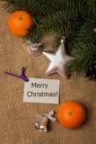 Tag Merry Christmas, postcard, mandarines, fir-cones Royalty Free Stock Photos