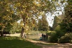 Tag am Park stockbilder
