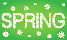 Spring tag composed from daisy flowers Royalty Free Stock Photo