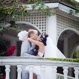 Am Tag von ihnen Hochzeit gerade geheiratet Lizenzfreies Stockfoto