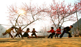 Tag of war. Vietnamese children play their favarite game Royalty Free Stock Images
