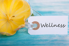 Tag with Wellness. On turquiose Boars with Yellow Tulip Blossom Stock Photos