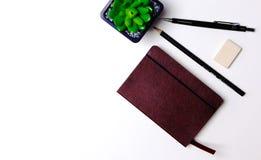 Tagebuch, Bleistifte und Kaktus auf dem Desktop Lizenzfreie Stockbilder