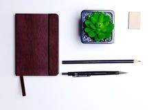 Tagebuch, Bleistifte und Kaktus auf dem Desktop Stockfoto