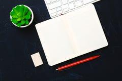 Tagebuch, Bleistifte und Kaktus auf dem Desktop Lizenzfreie Stockfotos