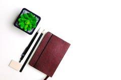 Tagebuch, Bleistifte und Kaktus auf dem Desktop Stockbilder