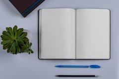 Tagebuch mit einem Stift und einem Bleistift lizenzfreie stockbilder