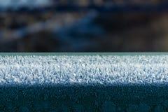 tagen hylla för bild för Antarktiskristallis Fotografering för Bildbyråer