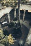 tagen vinter 2009 för barcelona domkyrka spain Arkivfoto