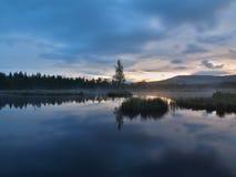 Tagesanbruchherbstsee mit SpiegelWasserspiegel im mysteriösen Wald, junger Baum auf Insel in der Mitte Neue grüne Farbe von Kräut Stockbilder