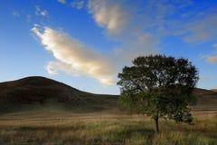 Tagesansicht der Herbstszene bei Inner Mongolia Stockbild