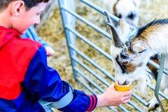 Tagesansicht sperrte Jungen auf den Krücken, die Ziege einziehen Lizenzfreie Stockfotografie