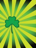 Tagesshamrock Str.-Patricks   Lizenzfreies Stockfoto