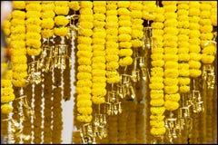 Tagete della decorazione del fiore Fotografie Stock